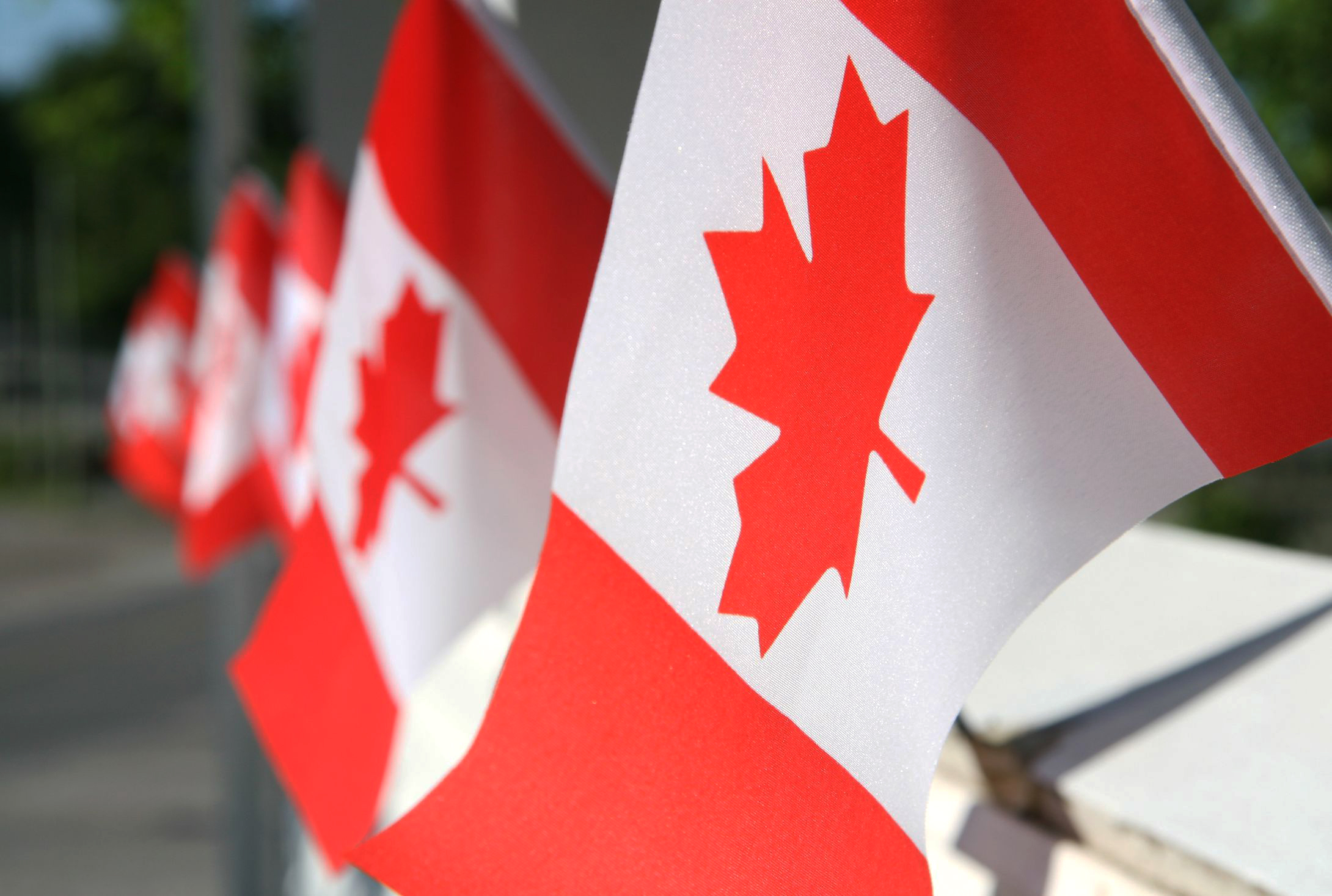 From Thailand To Canada – The Success Stories